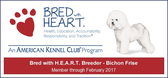 AKC Bred with heart banner 579161